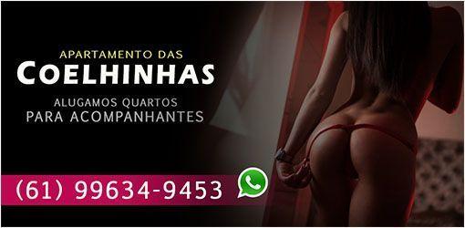 APARTAMENTO DAS COELHINHAS