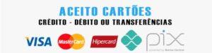 CARTAO-PIX-300x75 Paula mulata